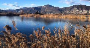 LA torbiere sconosciuto 33 1 300x161 - Le 10 cose da vedere sul lago d'Iseo in tutte le stagioni